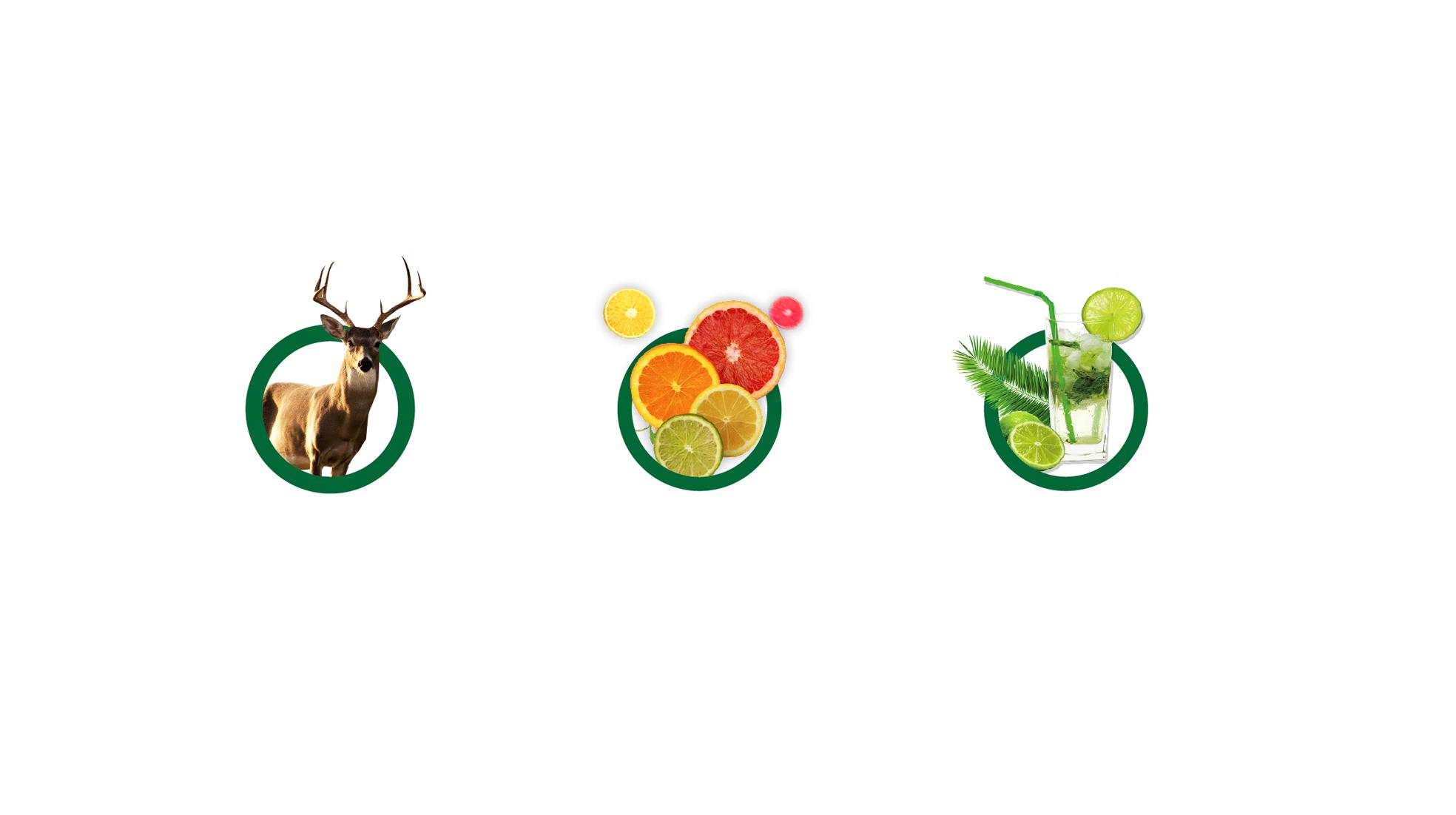鹿小里logo设计